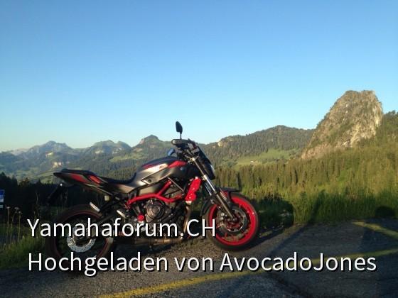 MT 07 Moto Cage auf der Ibergeregg